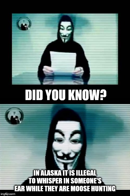 Oh Really? | DID YOU KNOW? IN ALASKA IT IS ILLEGAL TO WHISPER IN SOMEONE'S EAR WHILE THEY ARE MOOSE HUNTING | image tagged in anonymous,did you know,alaska,moose,hunting | made w/ Imgflip meme maker
