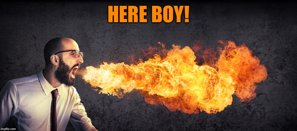 Angry preacher breathing fire | HERE BOY! | image tagged in angry preacher breathing fire | made w/ Imgflip meme maker