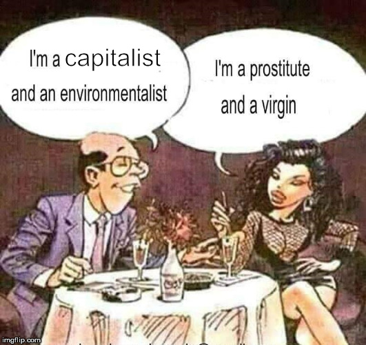 capitalist | image tagged in prostitute,virgin,capitalism,environment | made w/ Imgflip meme maker