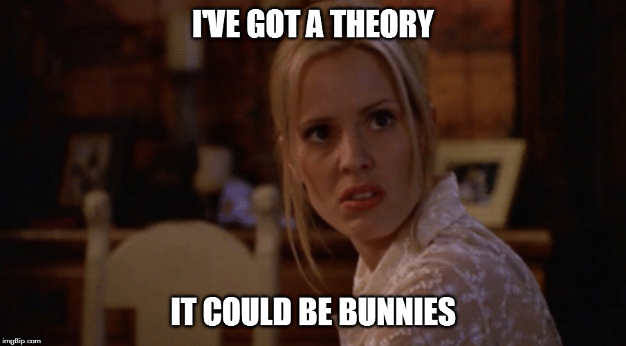 Anya Irritated | I'VE GOT A THEORY IT COULD BE BUNNIES | image tagged in anya irritated | made w/ Imgflip meme maker