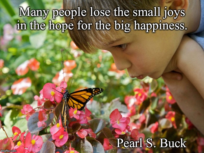 Small joys | Many people lose the small joys in the hope for the big happiness. Pearl S. Buck | image tagged in joy,hope,butterfly,pearl s buck | made w/ Imgflip meme maker