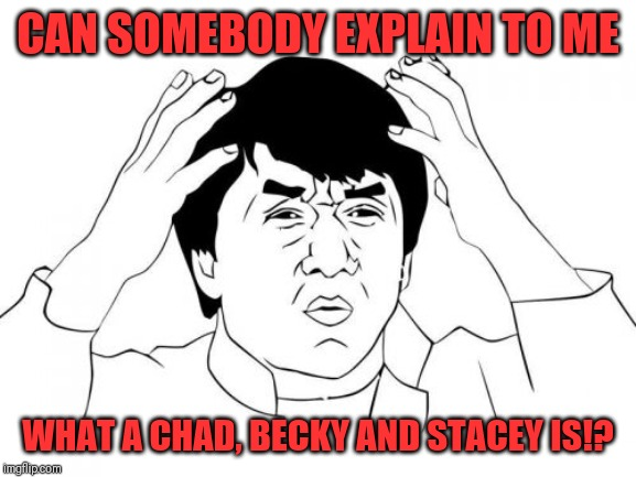 Cos I'm clueless like most people | CAN SOMEBODY EXPLAIN TO ME WHAT A CHAD, BECKY AND STACEY IS!? | image tagged in memes,jackie chan wtf,chad,stacey,becky | made w/ Imgflip meme maker