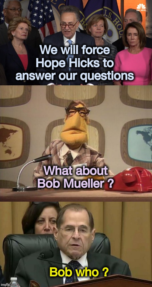 Bobby , you got some 'splainin' to do ! | We will force Hope Hicks to answer our questions Bob who ? What about Bob Mueller ? | image tagged in democrat congressmen,cowards,liars club,politicians suck,good luck,burnt toast | made w/ Imgflip meme maker
