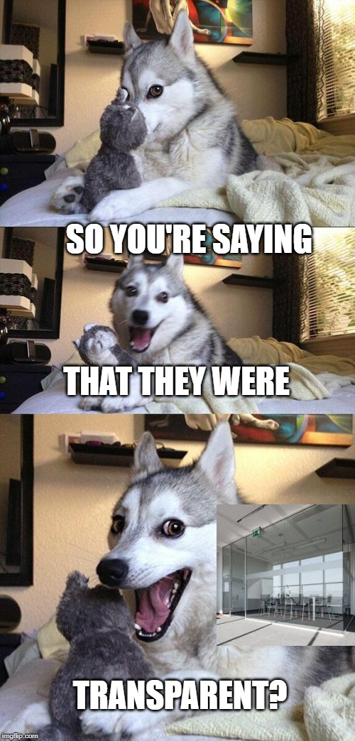 SO YOU'RE SAYING THAT THEY WERE TRANSPARENT? | image tagged in memes,bad pun dog | made w/ Imgflip meme maker