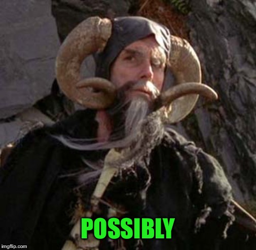 Tim the Enchanter - Monty Python | POSSIBLY | image tagged in tim the enchanter - monty python | made w/ Imgflip meme maker