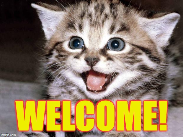 Cute Kitten Hopes | WELCOME! | image tagged in cute kitten hopes | made w/ Imgflip meme maker