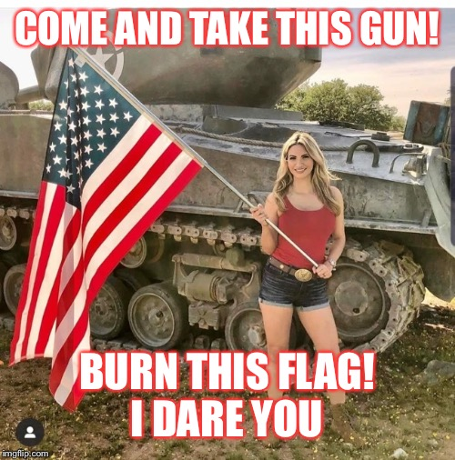 Flag | COME AND TAKE THIS GUN! BURN THIS FLAG!I DARE YOU | image tagged in flag | made w/ Imgflip meme maker