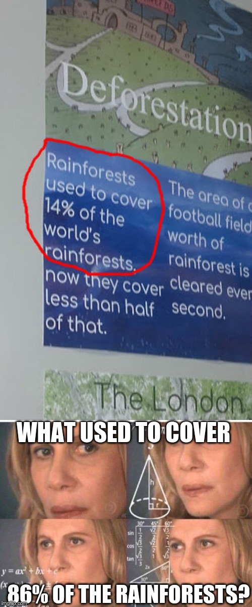 in my school's science class | 86% OF THE RAINFORESTS? WHAT USED TO COVER | image tagged in memes,school,rainforests,trees,dank memes,science | made w/ Imgflip meme maker