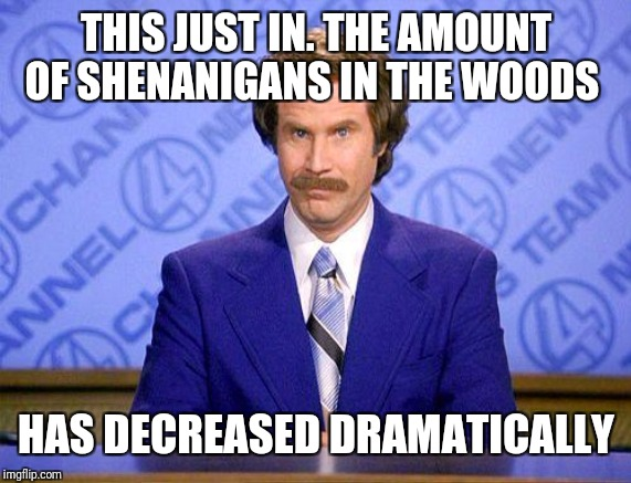 anchorman news update | THIS JUST IN. THE AMOUNT OF SHENANIGANS IN THE WOODS HAS DECREASED DRAMATICALLY | image tagged in anchorman news update | made w/ Imgflip meme maker