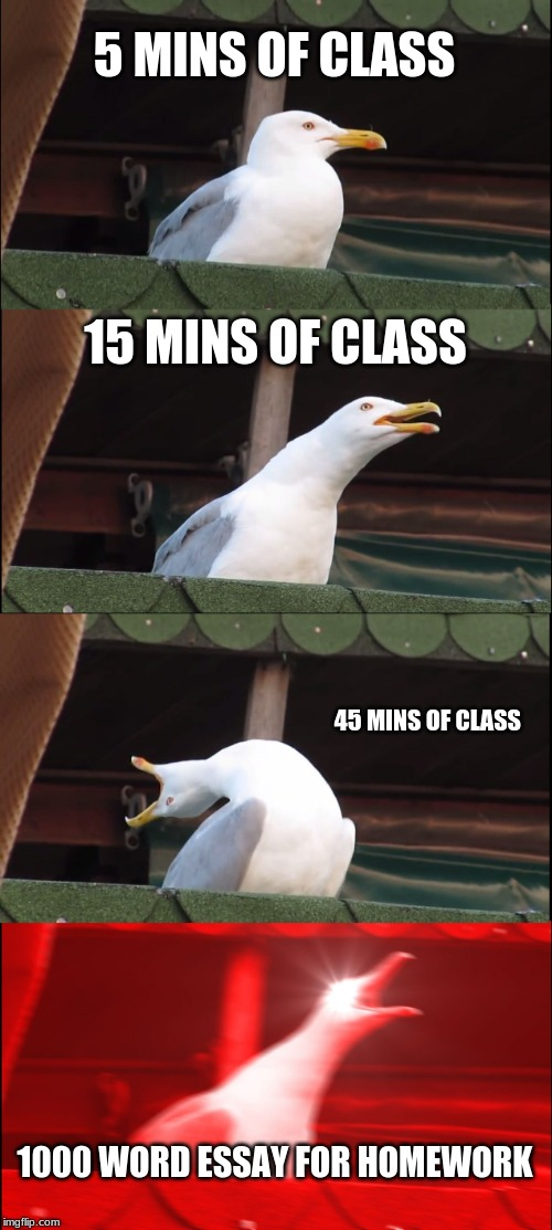 Inhaling Seagull Meme | 5 MINS OF CLASS 15 MINS OF CLASS 45 MINS OF CLASS 1000 WORD ESSAY FOR HOMEWORK | image tagged in memes,inhaling seagull | made w/ Imgflip meme maker