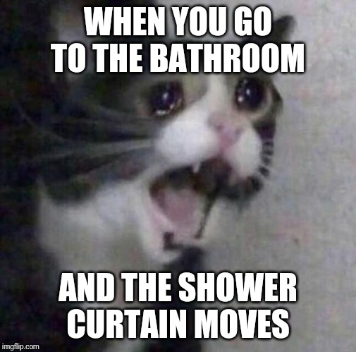 Never trust shower curtains | WHEN YOU GO TO THE BATHROOM AND THE SHOWER CURTAIN MOVES | image tagged in crying cat | made w/ Imgflip meme maker