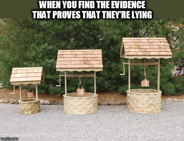When You Find The Evidence That Proves That They're Lying | WHEN YOU FIND THE EVIDENCE THAT PROVES THAT THEY'RE LYING | image tagged in well well well,justice,caught,caught in the act,kinda smart | made w/ Imgflip meme maker