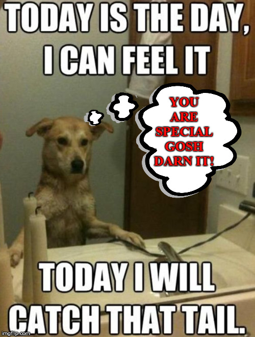 Positive thinking dog, get that tail! | YOU ARE SPECIAL GOSH DARN IT! | image tagged in dog,positive thinking,funny meme | made w/ Imgflip meme maker