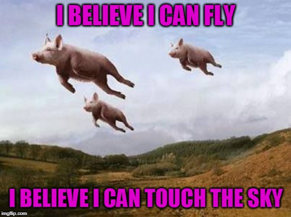 Pigs Fly | I BELIEVE I CAN FLY I BELIEVE I CAN TOUCH THE SKY | image tagged in pigs fly | made w/ Imgflip meme maker