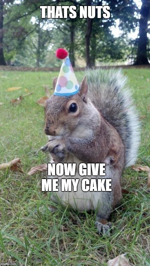 Super Birthday Squirrel |  THATS NUTS; NOW GIVE ME MY CAKE | image tagged in memes,super birthday squirrel | made w/ Imgflip meme maker