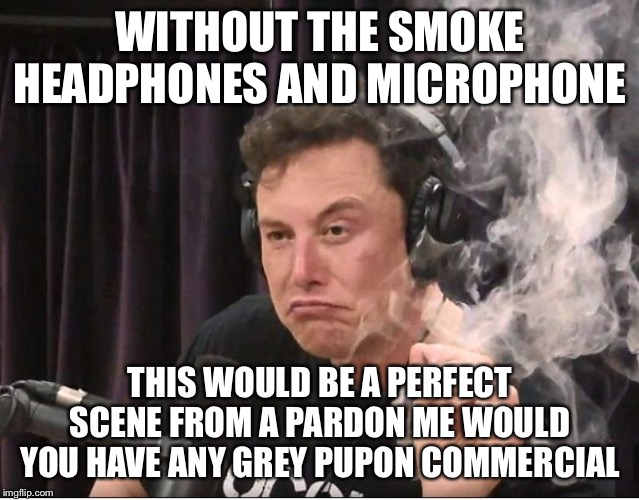 Elon Musk smoking a joint |  WITHOUT THE SMOKE HEADPHONES AND MICROPHONE; THIS WOULD BE A PERFECT SCENE FROM A PARDON ME WOULD YOU HAVE ANY GREY PUPON COMMERCIAL | image tagged in elon musk smoking a joint | made w/ Imgflip meme maker
