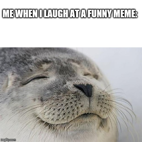 Satisfied Seal |  ME WHEN I LAUGH AT A FUNNY MEME: | image tagged in memes,satisfied seal | made w/ Imgflip meme maker
