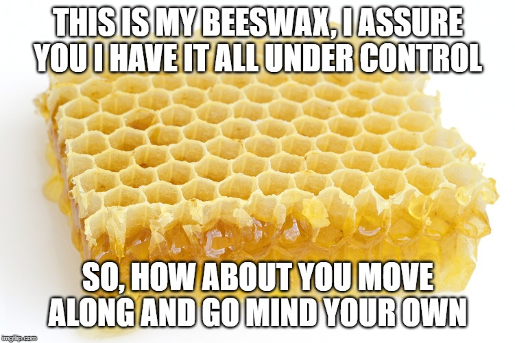 Mind Your Own Beeswax | THIS IS MY BEESWAX, I ASSURE YOU I HAVE IT ALL UNDER CONTROL SO, HOW ABOUT YOU MOVE ALONG AND GO MIND YOUR OWN | image tagged in beeswax,bees,gossip,nosey,but thats none of my business | made w/ Imgflip meme maker
