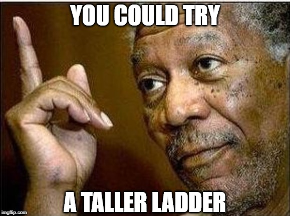 morgan freeman | YOU COULD TRY A TALLER LADDER | image tagged in morgan freeman | made w/ Imgflip meme maker