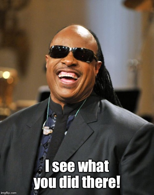 Stevie Wonder | I see what you did there! | image tagged in stevie wonder | made w/ Imgflip meme maker