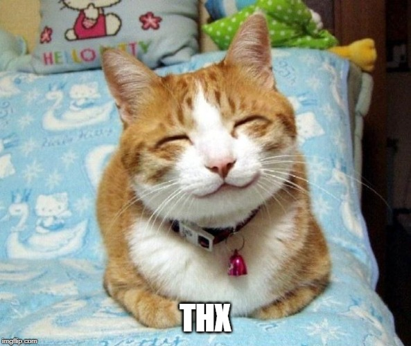 Cute Smiling Cat | THX | image tagged in cute smiling cat | made w/ Imgflip meme maker