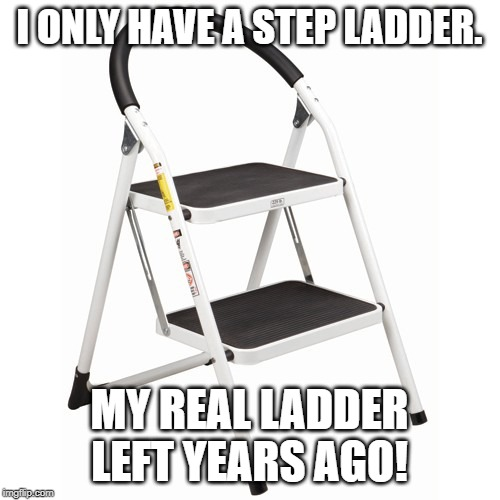 Step Ladder | I ONLY HAVE A STEP LADDER. MY REAL LADDER LEFT YEARS AGO! | image tagged in step ladder | made w/ Imgflip meme maker
