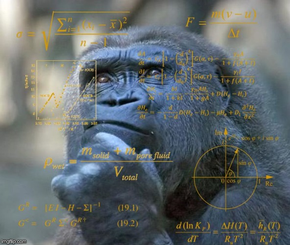Thinking Math Ape | image tagged in thinking math ape | made w/ Imgflip meme maker