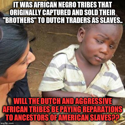 "Third World Skeptical Kid | IT WAS AFRICAN NEGRO TRIBES THAT ORIGINALLY CAPTURED AND SOLD THEIR ""BROTHERS"" TO DUTCH TRADERS AS SLAVES.. WILL THE DUTCH AND AGGRESSIVE AF 