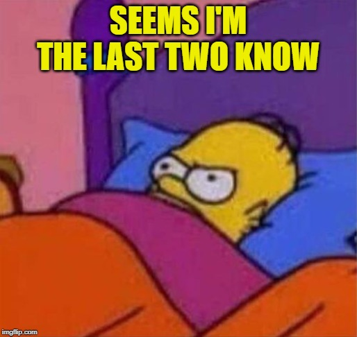 angry homer simpson in bed | SEEMS I'M THE LAST TWO KNOW | image tagged in angry homer simpson in bed | made w/ Imgflip meme maker