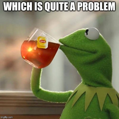 But Thats None Of My Business Meme | WHICH IS QUITE A PROBLEM | image tagged in memes,but thats none of my business,kermit the frog | made w/ Imgflip meme maker