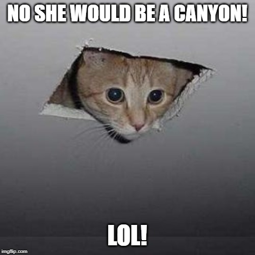 Ceiling Cat Meme | NO SHE WOULD BE A CANYON! LOL! | image tagged in memes,ceiling cat | made w/ Imgflip meme maker