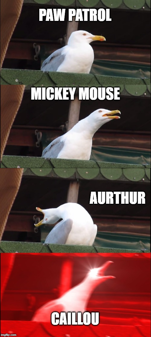 Intro songs that make me want to jump off a cliff...am I the only one? | PAW PATROL MICKEY MOUSE AURTHUR CAILLOU | image tagged in memes,inhaling seagull | made w/ Imgflip meme maker