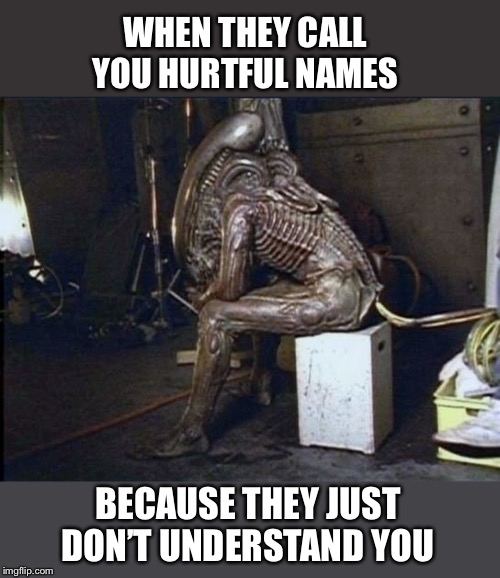 Aliens have feelings too | WHEN THEY CALL YOU HURTFUL NAMES BECAUSE THEY JUST DON'T UNDERSTAND YOU | image tagged in sad,alien,aliens,funny memes | made w/ Imgflip meme maker