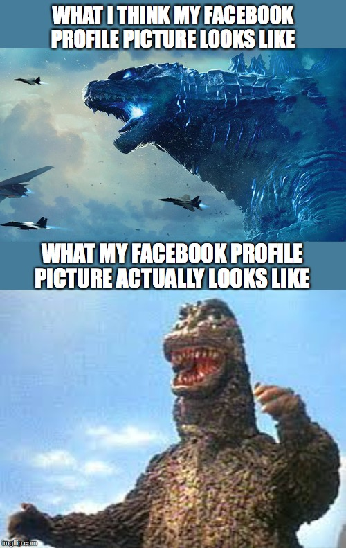 WHAT I THINK MY FACEBOOK PROFILE PICTURE LOOKS LIKE WHAT MY FACEBOOK PROFILE PICTURE ACTUALLY LOOKS LIKE | image tagged in godzilla,facebook,profile picture | made w/ Imgflip meme maker