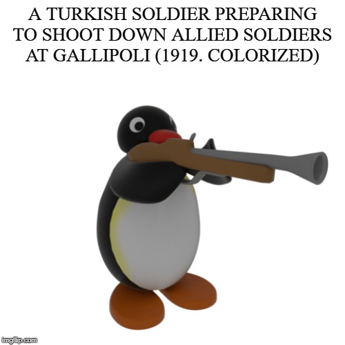 Just some history for ya | A TURKISH SOLDIER PREPARING TO SHOOT DOWN ALLIED SOLDIERS AT GALLIPOLI (1919. COLORIZED) | image tagged in pingu,ww1 | made w/ Imgflip meme maker