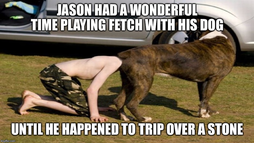 Heads up | JASON HAD A WONDERFUL TIME PLAYING FETCH WITH HIS DOG UNTIL HE HAPPENED TO TRIP OVER A STONE | image tagged in dog,accident | made w/ Imgflip meme maker