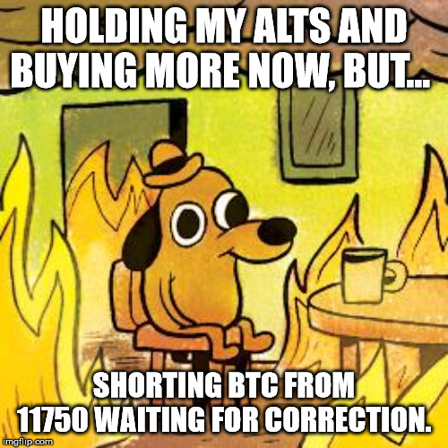 Dog in burning house | HOLDING MY ALTS AND BUYING MORE NOW, BUT... SHORTING BTC FROM 11750 WAITING FOR CORRECTION. | image tagged in dog in burning house | made w/ Imgflip meme maker