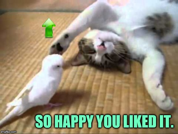 SO HAPPY YOU LIKED IT. | made w/ Imgflip meme maker
