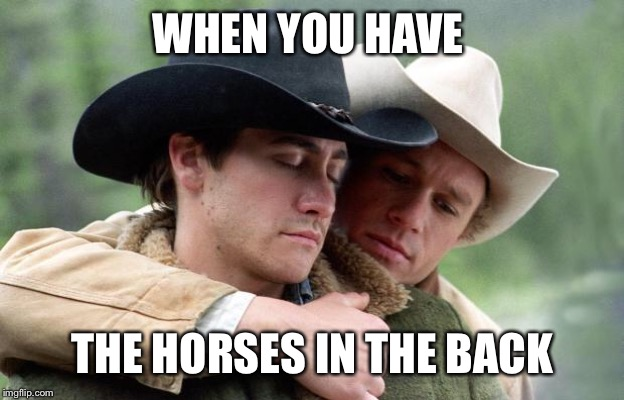 Brokeback Mountain | WHEN YOU HAVE THE HORSES IN THE BACK | image tagged in brokeback mountain | made w/ Imgflip meme maker