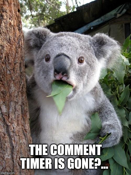 Surprised Koala Meme | THE COMMENT TIMER IS GONE?... | image tagged in memes,surprised koala | made w/ Imgflip meme maker