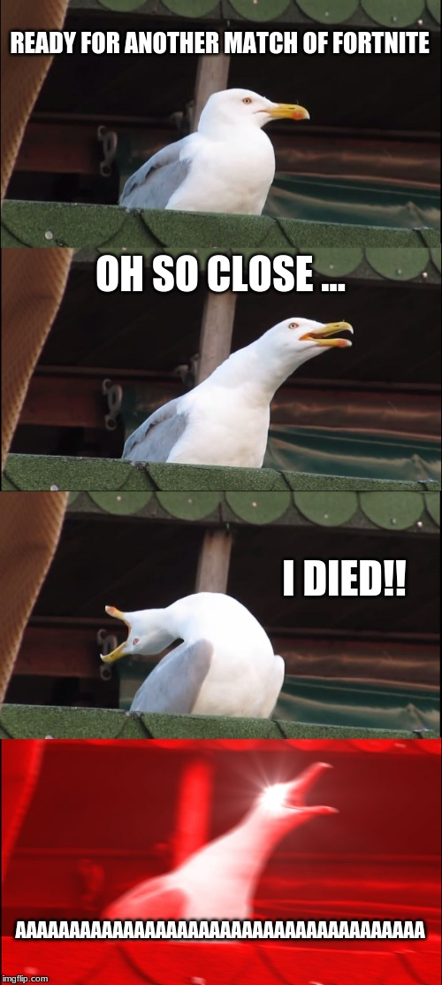 Inhaling Seagull Meme | READY FOR ANOTHER MATCH OF FORTNITE OH SO CLOSE ... I DIED!! AAAAAAAAAAAAAAAAAAAAAAAAAAAAAAAAAAAAAA | image tagged in memes,inhaling seagull | made w/ Imgflip meme maker