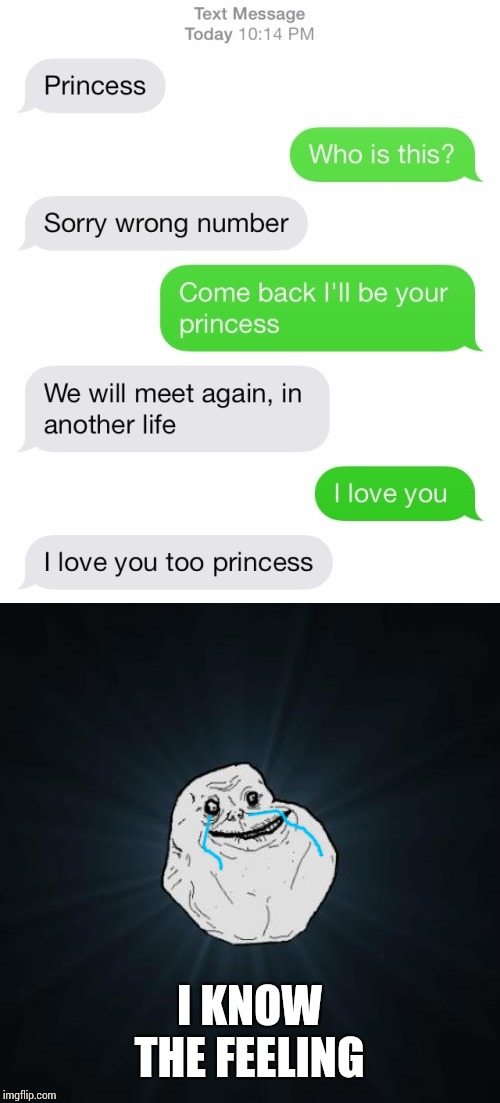 Wrong princess | I KNOW THE FEELING | image tagged in memes,forever alone | made w/ Imgflip meme maker