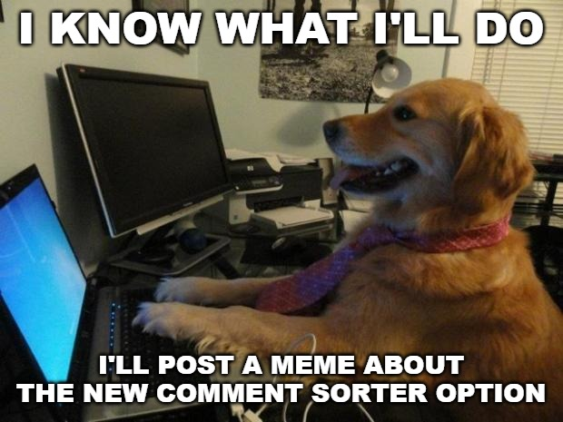 Dog behind a computer | I KNOW WHAT I'LL DO I'LL POST A MEME ABOUT THE NEW COMMENT SORTER OPTION | image tagged in dog behind a computer | made w/ Imgflip meme maker
