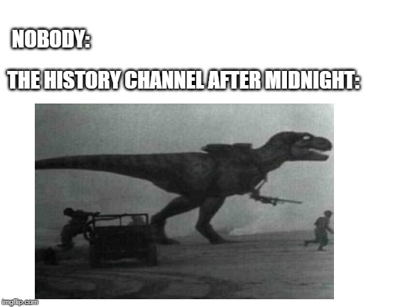 very crap meme | NOBODY: THE HISTORY CHANNEL AFTER MIDNIGHT: | image tagged in dinosaur,history channel,ww1,history,trex | made w/ Imgflip meme maker