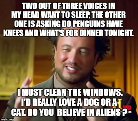 Ancient Aliens Meme | TWO OUT OF THREE VOICES IN MY HEAD WANT TO SLEEP, THE OTHER ONE IS ASKING DO PENGUINS HAVE KNEES AND WHAT'S FOR DINNER TONIGHT. I MUST CLEAN | image tagged in memes,ancient aliens | made w/ Imgflip meme maker