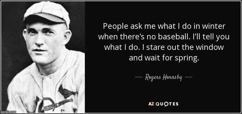 My favorite baseball quote | image tagged in roger,baseball | made w/ Imgflip meme maker