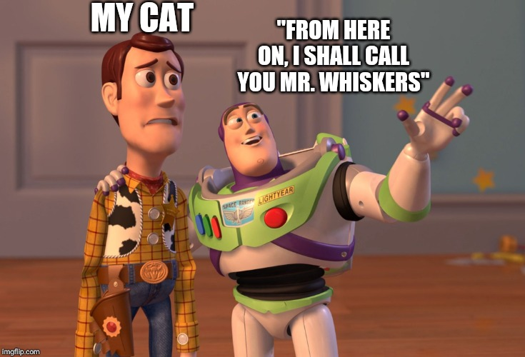 "MY CAT ""FROM HERE ON, I SHALL CALL YOU MR. WHISKERS"" 