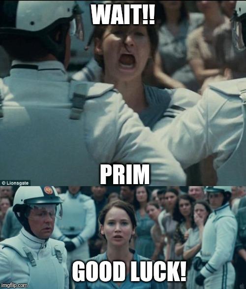 katniss Memes & GIFs - Imgflip