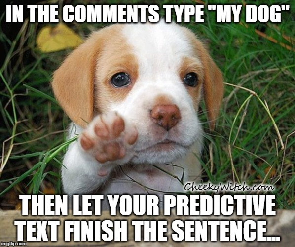 "dog puppy bye | IN THE COMMENTS TYPE ""MY DOG"" THEN LET YOUR PREDICTIVE TEXT FINISH THE SENTENCE... CheekyWitch.com 