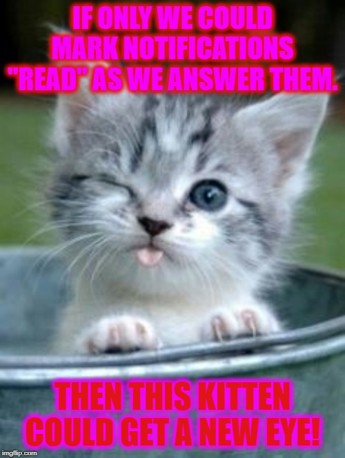 "Thanks for the other cool stuff! Now we need ONE more thing! We want to mark our notifications as we answer them! | IF ONLY WE COULD MARK NOTIFICATIONS ""READ"" AS WE ANSWER THEM. THEN THIS KITTEN COULD GET A NEW EYE! 